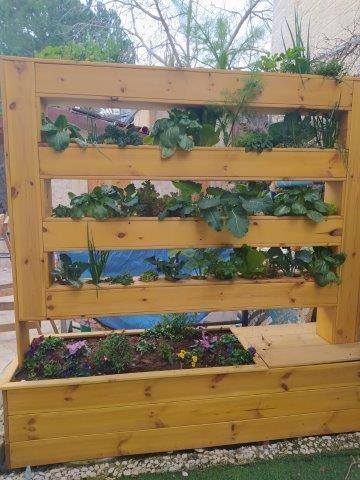 מתקן מעץ לגידול צמחי תבלין וירקות. עיצבו וביצוע: 'בוטמיקה'