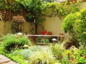 חצר של דירת גן
