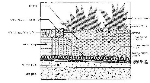 תרשים - תכנון גינת גג בקונסוליה