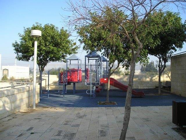 עצים בגינה ציבורית