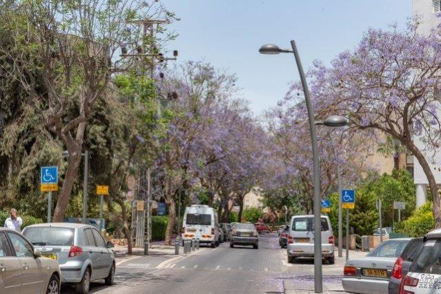 רחוב שרירא בראשון לציון