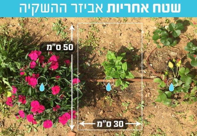 אביזר השקיה בערוגת ירקות