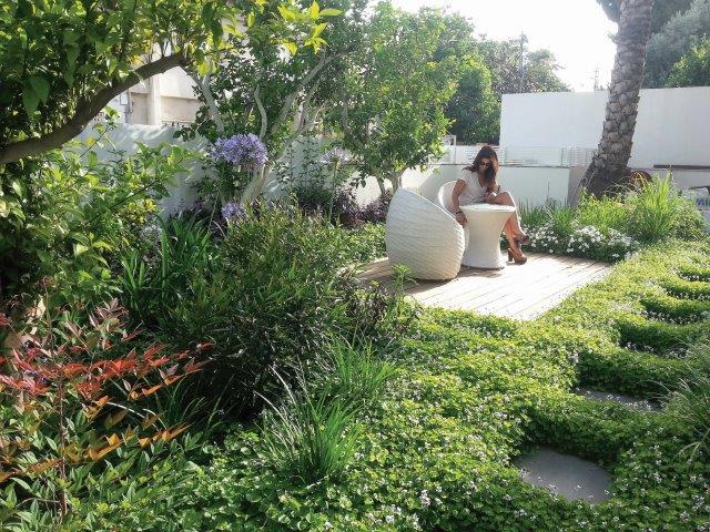 חדר בגינה עטוף בצמחייה