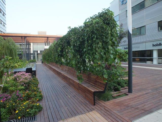 גן פתוח במרחב הציבורי