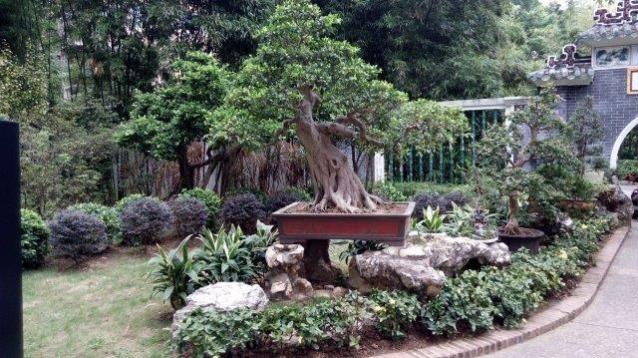 אלמנטים בנויים בגן במקאו