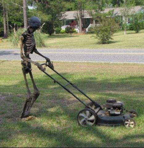 כיסוח דשא עם מכסחה זולה יכול לקחת זמן...