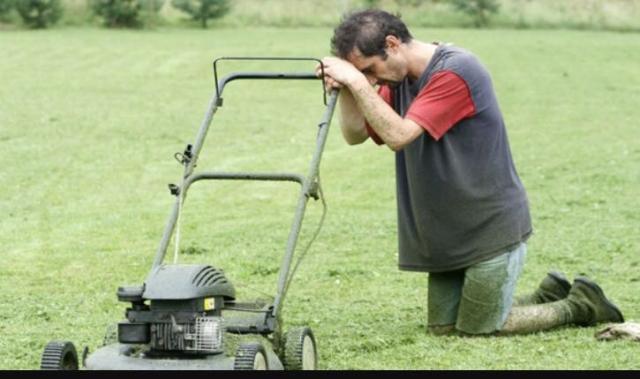 מכסחת דשא זולה