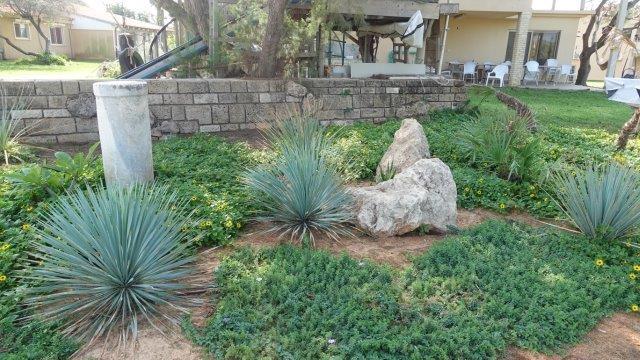 צמחייה נמוכה בערוגות של הבתים שנמצאים בקו ראשון לים כדי לא לחסום את הנוף