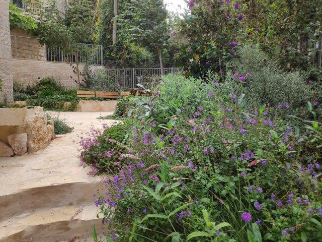 צמחיה בגינה