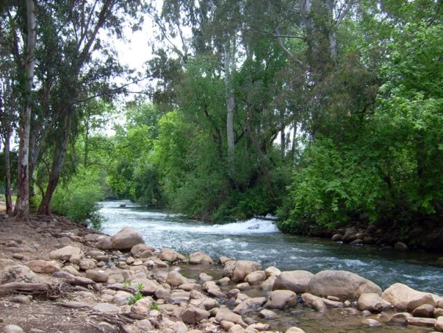 שמורת הטבע נחל שניר, תמונה מויקיפדיה.