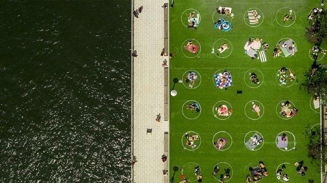 פארק הדומינו בברוקלין