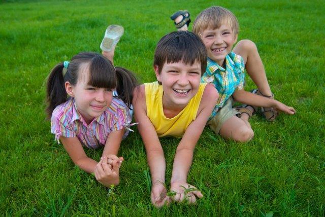 נימוקים בעד דשא טבעי
