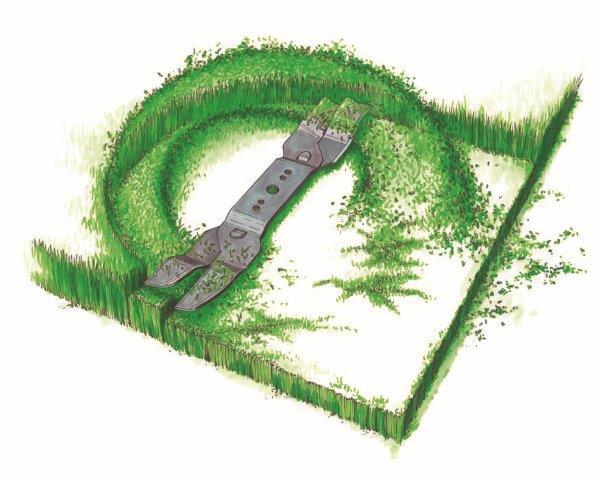 מכסחת דשא סכין כיסוח