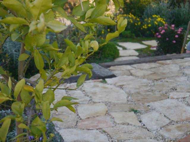 תיחום אזורים בגן