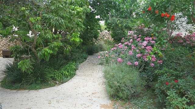 החלק התחתון של הגינה
